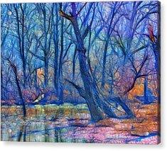 Fairytale Swamp Acrylic Print