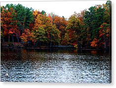 Fall Across The Lake Acrylic Print by Linda Mesibov