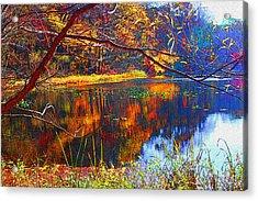 Fall At Surprise Lake Acrylic Print by Michael Dantuono