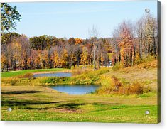 Fall At The Ponds Acrylic Print