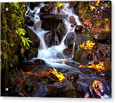 Fall At Wahkeena Acrylic Print