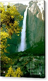 Fall Beauty Acrylic Print by Johanne Peale