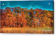 Fall Beauty  Acrylic Print