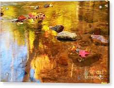 Fall Color In Stream Acrylic Print by Charline Xia