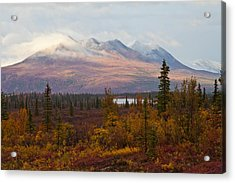 Fall Colors Of Alaska Acrylic Print