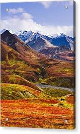 Fall Colours And Alaska Range, Denali Acrylic Print by Yves Marcoux
