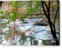Fall Day  Acrylic Print by Ar S