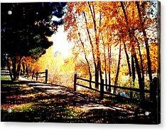 Fall Day Acrylic Print by David Alvarez