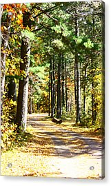 Acrylic Print featuring the photograph Fall Day To Remember by Paula Brown