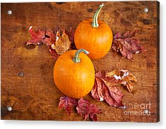 Fall Decorative Pumpkins Acrylic Print