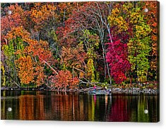 Fall Fishing Acrylic Print by Boyd Alexander