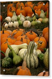 Fall Harvest Acrylic Print by Brenda Flynn