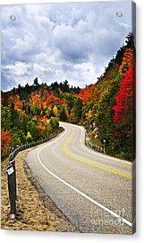 Fall Highway Acrylic Print by Elena Elisseeva