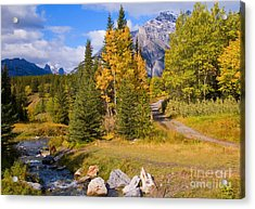 Fall In Banff National Park Acrylic Print by Bob and Nancy Kendrick