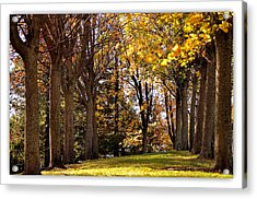 Acrylic Print featuring the photograph fall in Folsom by Rima Biswas