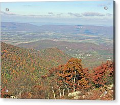 Acrylic Print featuring the photograph Fall In Shenandoah by Shirin Shahram Badie
