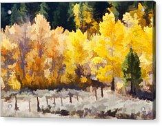 Fall In The Sierra Acrylic Print by Carol Leigh