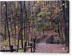 Fall In Yellowsprings Acrylic Print by Tina Karle