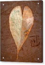 Fall Love Letters Acrylic Print by Cindy Wright