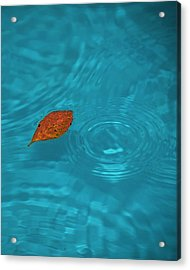 Fall... Acrylic Print