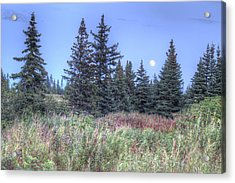 Acrylic Print featuring the photograph Fall Moon by Michele Cornelius