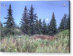 Fall Moon Acrylic Print by Michele Cornelius