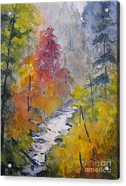Fall Mountain Stream Acrylic Print by Gretchen Allen
