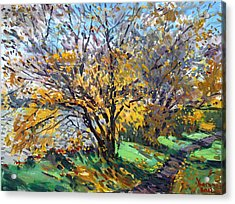 Fall Of Leaves Acrylic Print by Ylli Haruni