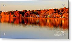 Fall On Horn Pond Acrylic Print