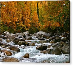 Fall On The Little Susitna River Acrylic Print