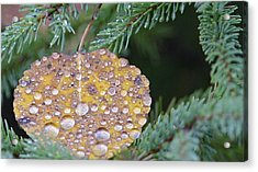 Fall Ornament Acrylic Print by Shirley Mailloux