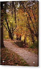 Fall Path Acrylic Print