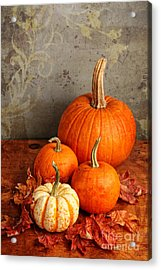 Acrylic Print featuring the photograph Fall Pumpkin And Decorative Squash by Verena Matthew