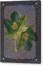 Fall Quartet Acrylic Print