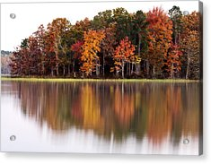 Fall Reflection Acrylic Print by CWellsPhotography