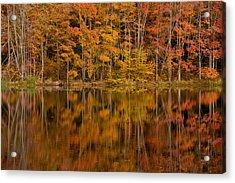 Fall Reflection Acrylic Print by Karol Livote