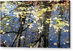 Acrylic Print featuring the photograph Fall Reflections by I'ina Van Lawick