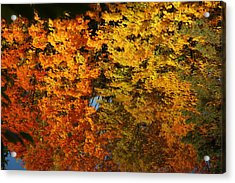 Fall Textures In Water Acrylic Print by LeeAnn McLaneGoetz McLaneGoetzStudioLLCcom