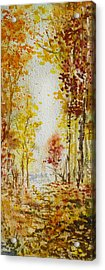 Fall Tree In Autumn Forest  Acrylic Print