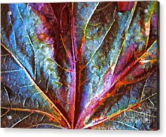 Fall Up Close Acrylic Print by Gwyn Newcombe