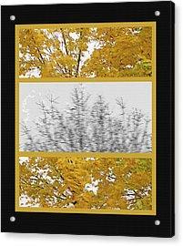 Fall Wind Triptych Acrylic Print by Steve Ohlsen