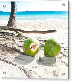 Fallen Coconuts Acrylic Print