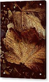 Fallen From Grace Acrylic Print by Odd Jeppesen