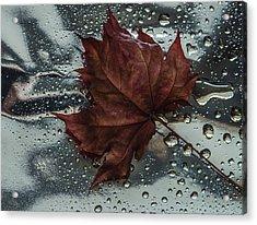 Fallen Leaf Acrylic Print
