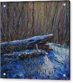 Fallen Wood In Winter Acrylic Print by Bob Richey