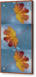 Falling Autumn Leaves Acrylic Print
