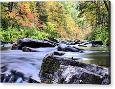 Falling Into Autumn Acrylic Print by JC Findley