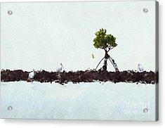 Falling Mangrove Leaf Acrylic Print by Dan Friend