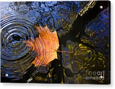 Falling To The Water Acrylic Print by Michal Boubin