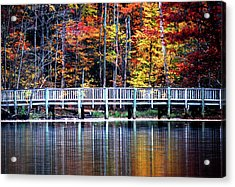 Acrylic Print featuring the photograph Falling Up by Linda Mesibov